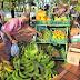 LOCALES /12 toneladas de alimentos vendidos en última jornada de Mercado Campesino en Dosquebradas