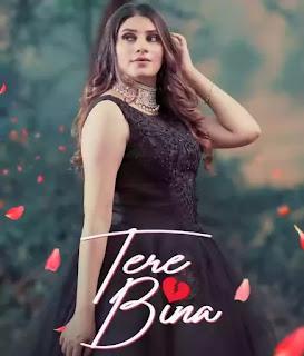 TERE BINA Lyrics - Mannat Noor