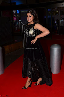 Niveda Thomas Black Sleeveless Cute Dress at 64th Jio Filmfare Awards South 2017 ~  Exclusive 041.JPG