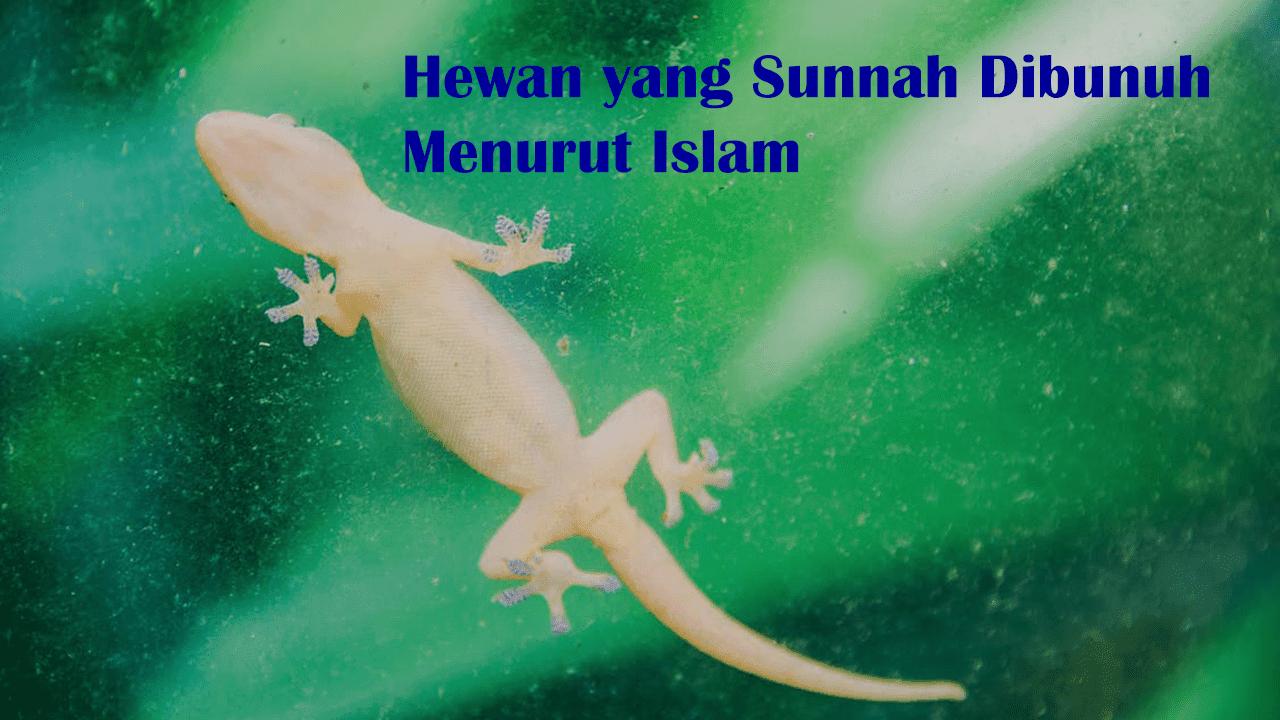 17 Hewan yang Sunnah Dibunuh Menurut Islam | Pasti Anda Kaget Mendengarnya