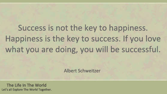 Top 10 Albert Schweitzer Quotes - The Life In The World