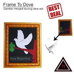Jual alat sulap frame to dove gambar jadi burung