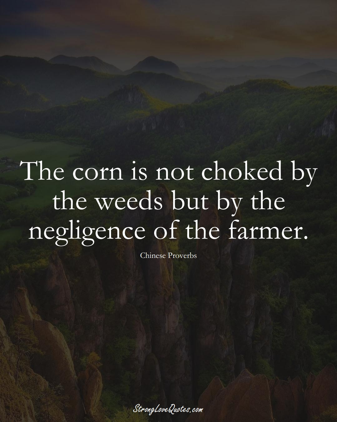 The corn is not choked by the weeds but by the negligence of the farmer. (Chinese Sayings);  #AsianSayings