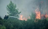 Ηλεία: Καλύτερη η κατάσταση από τη φωτιά στη Ζαχάρω