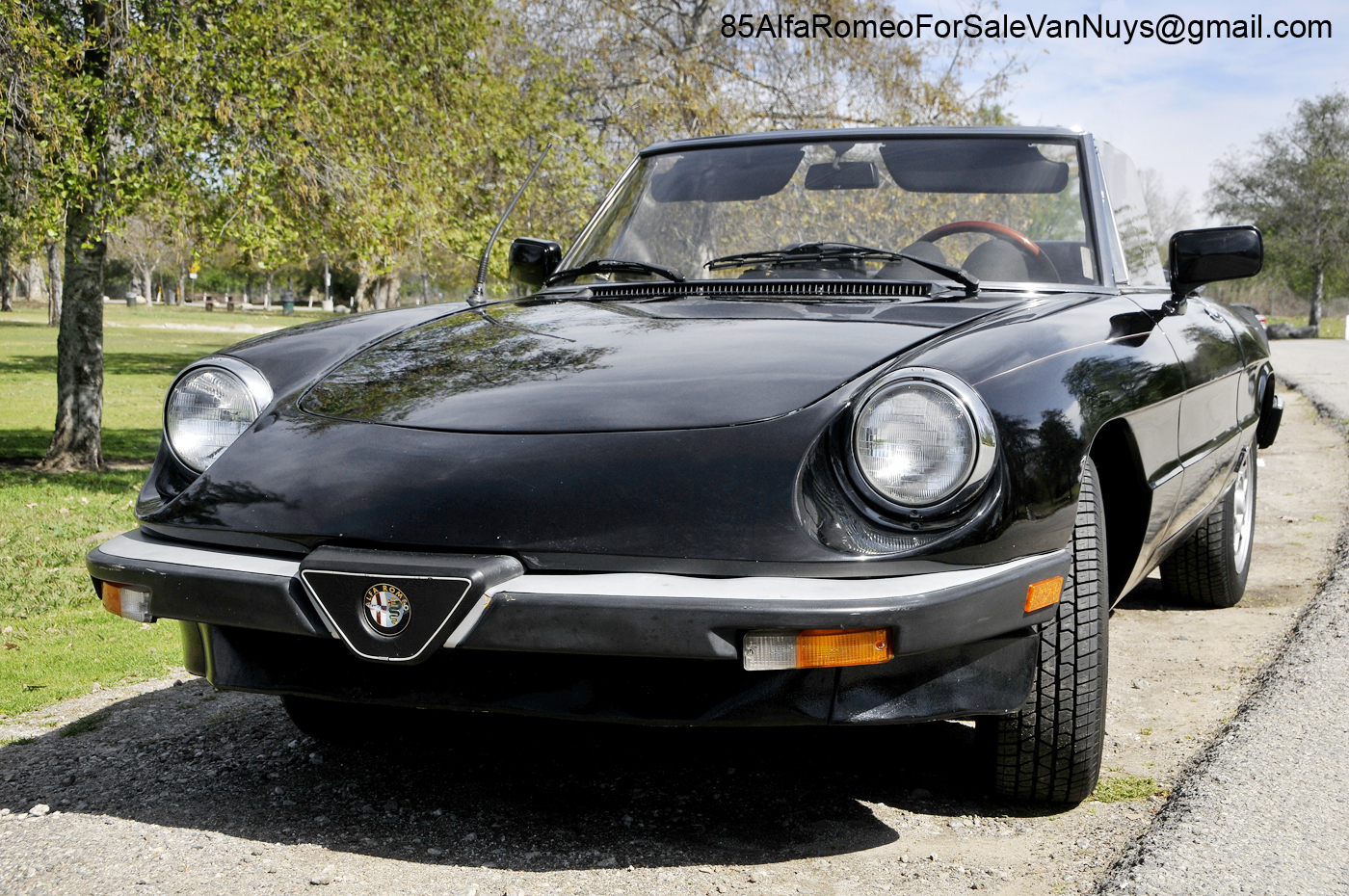 Vw Van Nuys >> 1985 Alfa Romeo Spider Veloce Convertible For Sale