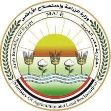 الزراعة: ارتفاع صادرات مصر الزراعية الى أكثر من 4.3 مليون طن
