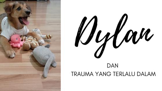 Dylan dan Trauma yang Terlalu Dalam