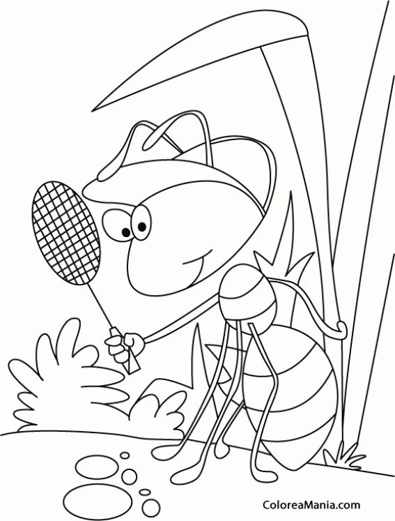 Ant Animal Coloring Pages For Kids ~ Best Coloring Pages