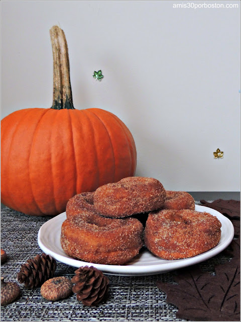Apple Cider Doughnuts/Donuts