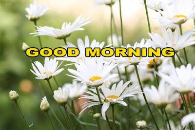 सुप्रभात-संदेश