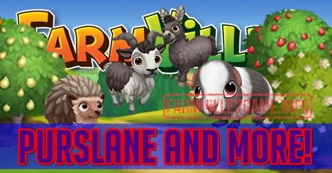 Farmville 2 Purslane and More
