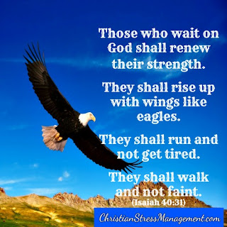 Those who wait on God like me shall renew their strength. I shall rise up with wings like eagles. I shall run and not get tired. I shall walk and not faint. (Adapted Isaiah 40:31)