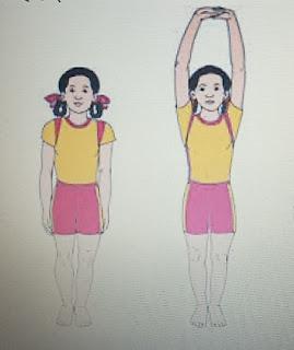 Best Yoga Posses for Flexibility.
