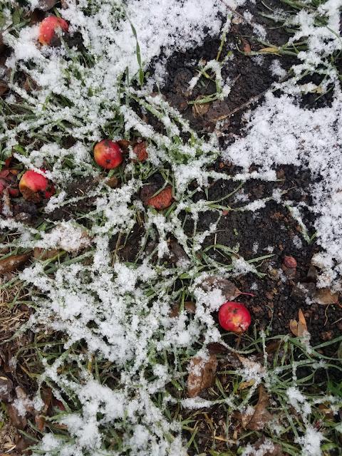 выпал первый снег