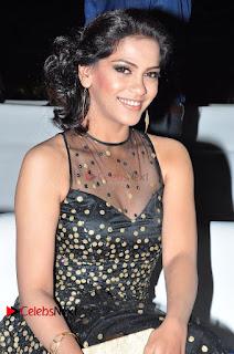 Actress Zabyn Khan Stills in Long Dress at 9th Edition Epicurus Indian Hospitality Awards .COM 0006.JPG