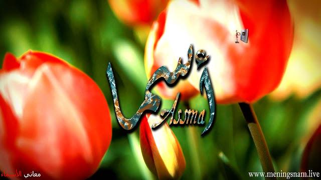 معنى اسم اسما وصفات حاملة هذا الاسم Asma