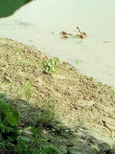 কুমারখালীর গড়াই নদীতে ভেসে বেড়াচ্ছে বেওয়ারিশ লাশ