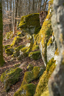 Felsentour Herbstein | Extratour Vogelsberg | Wandern in Hessen 25