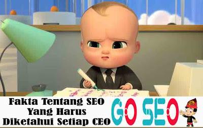 Fakta Tentang SEO Yang Harus Diketahui Setiap CEO