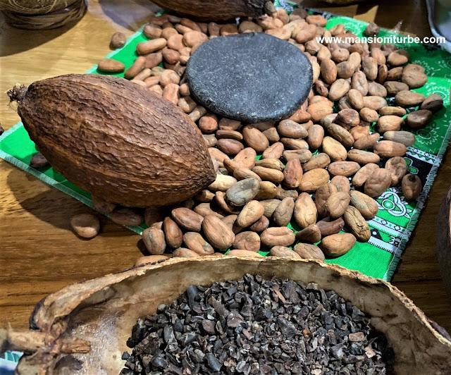 Chocolate y Cacao Tostado