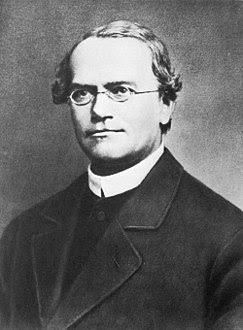 جريجور مندل مؤسس علم الوراثة