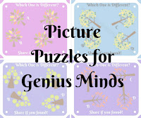 Picture Puzzles for Genius Minds