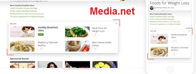 5 أسباب تجعل Media.net أفضل من شبكات الإعلانية  الأخرى