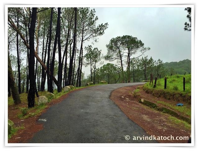 road, beautiful road, baijnath,