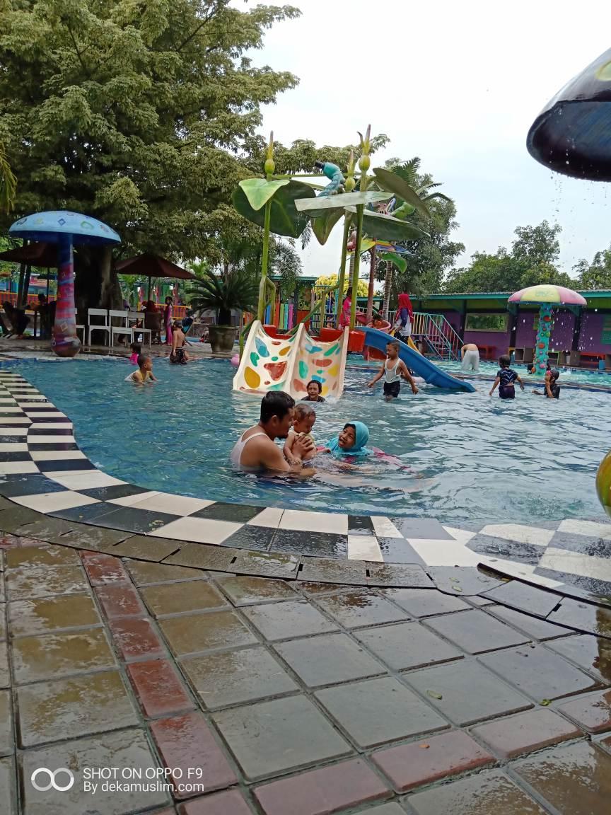 Kolam Renang Sidoarjo : kolam, renang, sidoarjo, Berenang, Refreshing, Kolam, Renang, Jedong, Cangkring, Sidoarjo, Dekamuslim