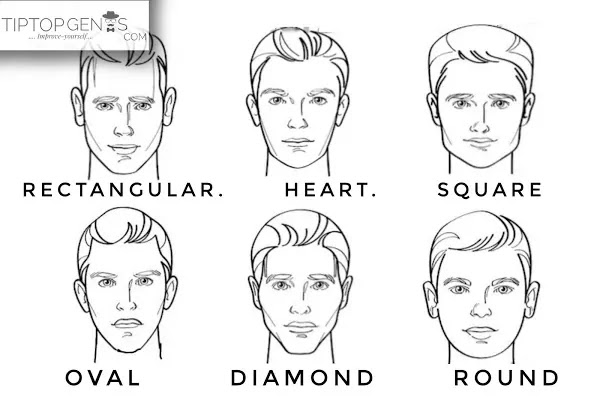 Vector image of different types of face shapes, men.