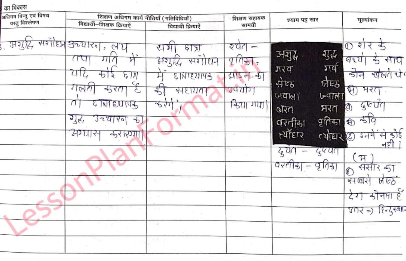 Class 5 Hindi Lesson Plan | B. Ed | D. El. Ed.