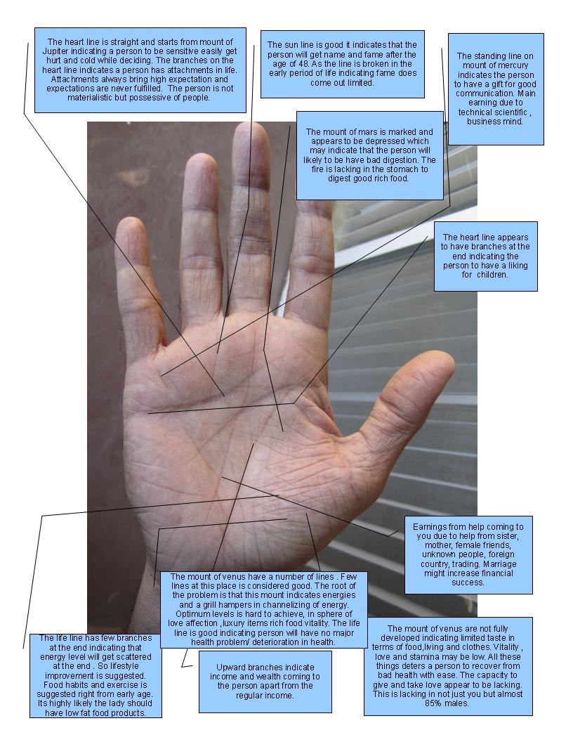 Best Palmistry Blog Palmist India Manish: Client Palm