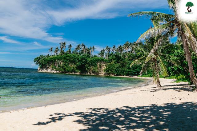 pinamuntugan island diy guide