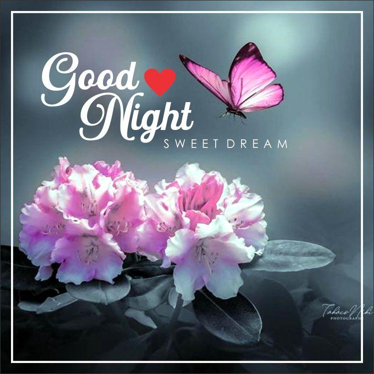 Beautiful-Good-Night-Images