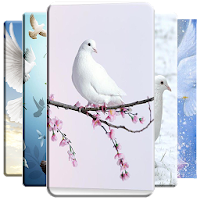 Dove Wallpaper Apk Download for Android