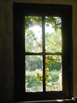 Parc le bournat fenêtre sur vert, malooka