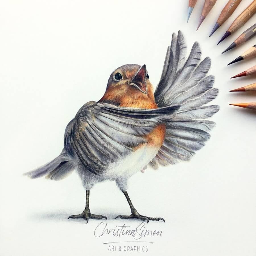 01-Singing-Robin-Red-Breast-Cristina-Simon-www-designstack-co