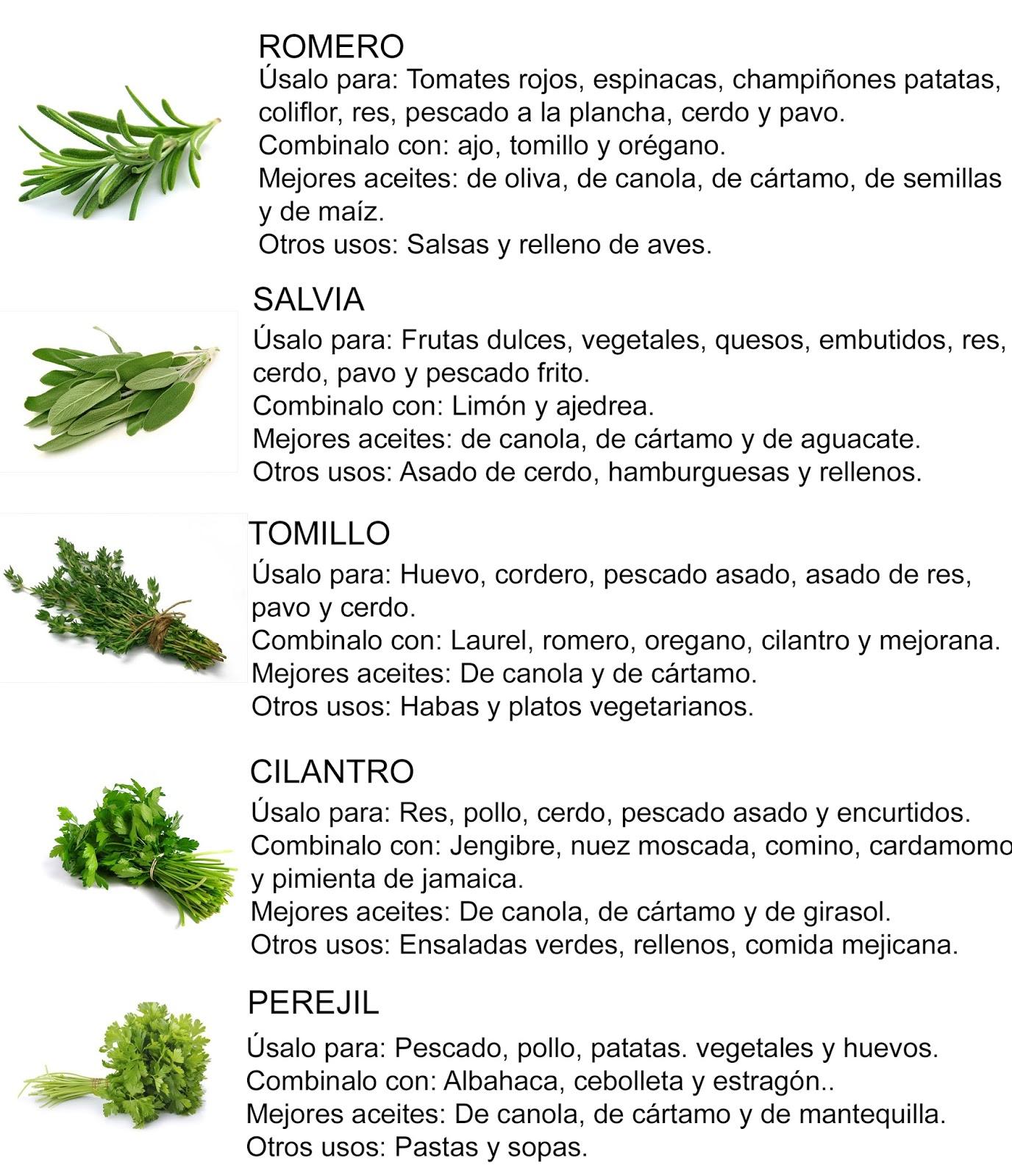 Clases de cocina 51 guia de hierbas para cocinar el - Musica para cocinar ...