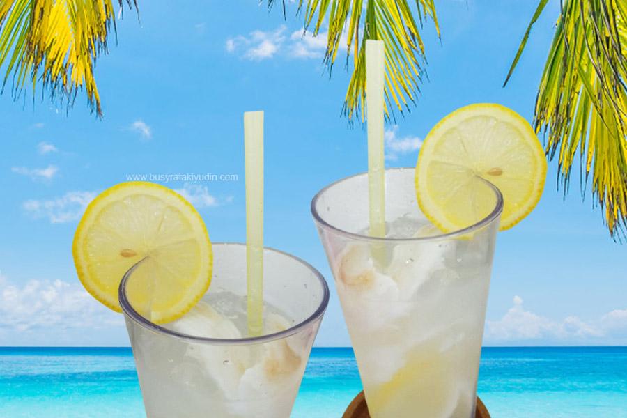 air kelapa muda, air kelapa lemon, khasiat kelapa muda, khasiat lemon, bagus ke makan lemon,