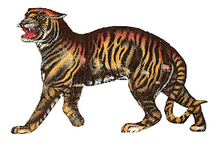 tiger animal antique illustration digital download
