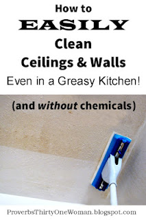 http://proverbsthirtyonewoman.blogspot.com/2014/09/how-to-easily-clean-ceilings-walls-even.html#.WkVurHlG0dh