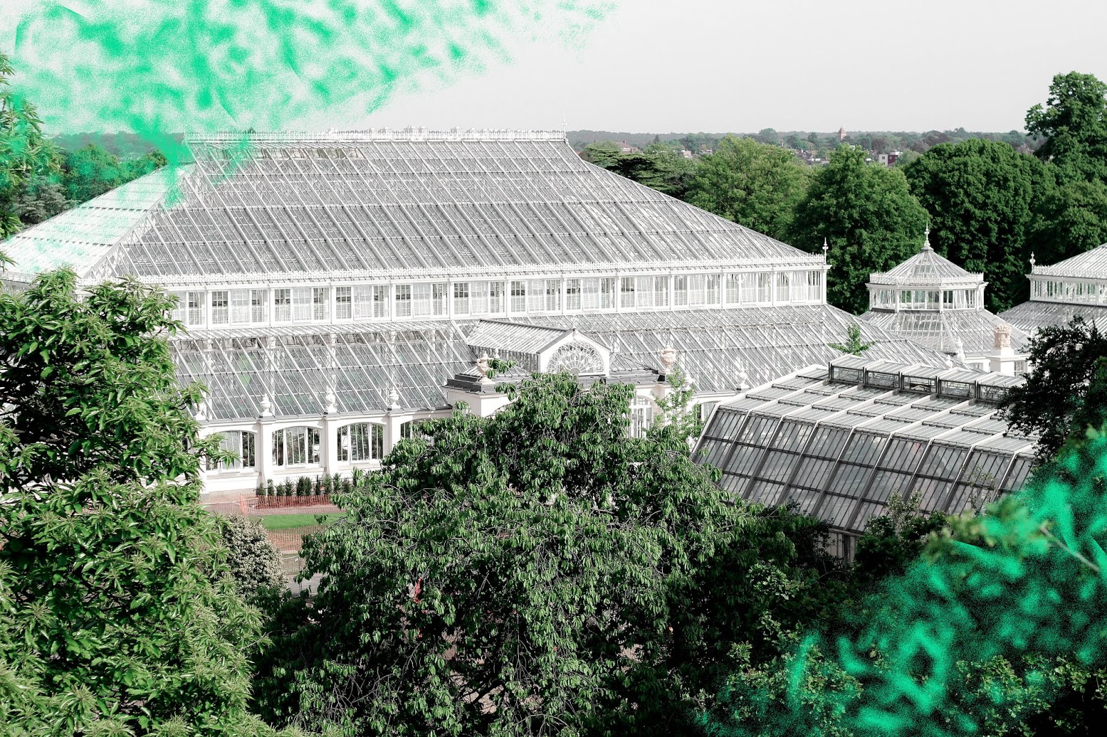 Kew Gardens The Temperate House 2018