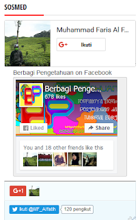Gambar Model Keempat Membuat Widget 3 in 1 (Fanspage FB, Google+, Follower Twitter)