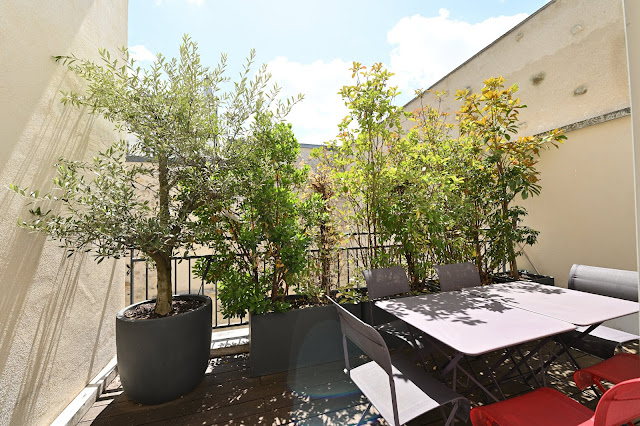SUMMER LUNCH TIME AT HOME SEARCH MY HOME IN PARIS