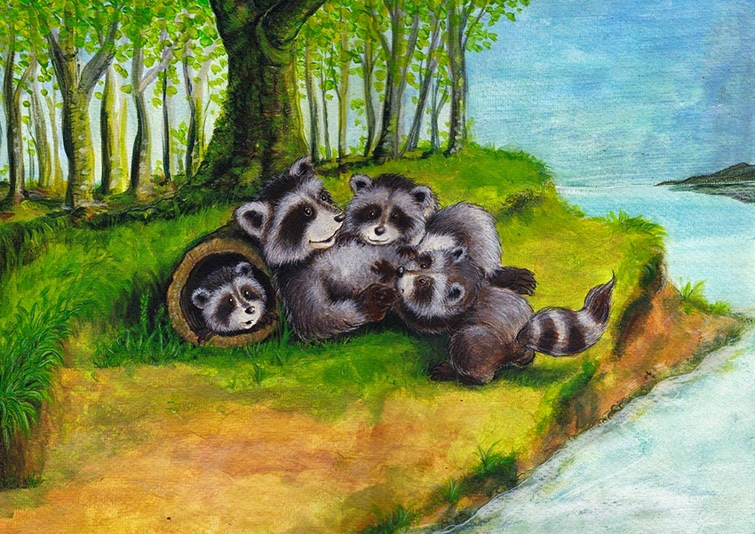 raccoon babies, Waschbären familie, raccoon family, Kinderbuchillustration, Tiere