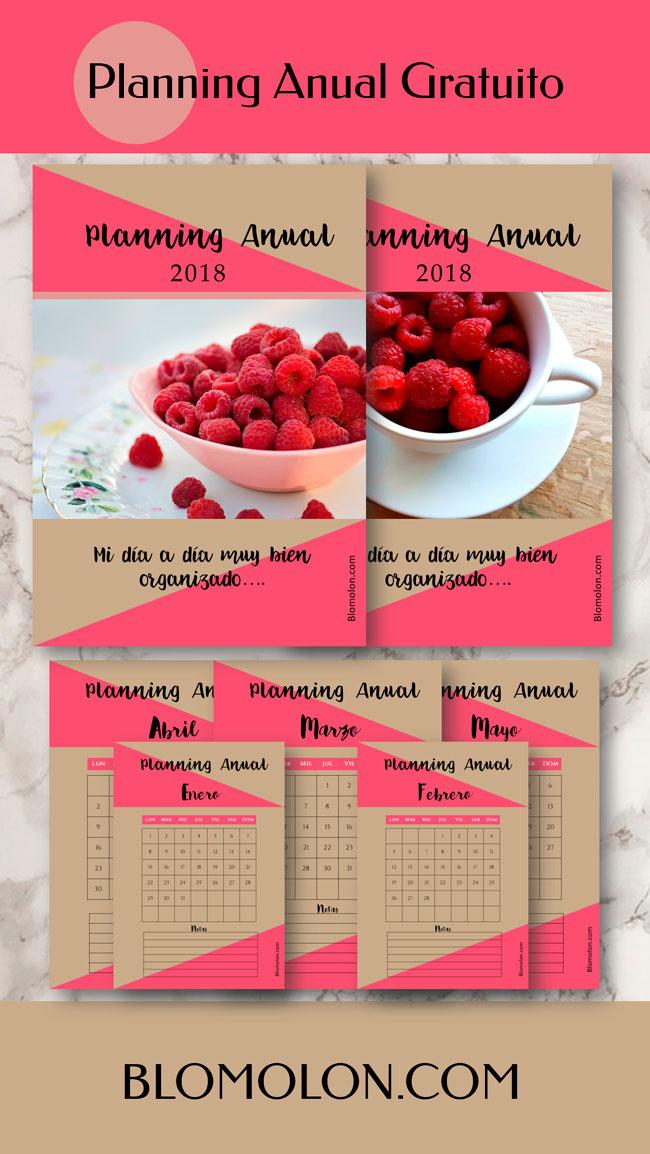 planning_anual_gratuito_1