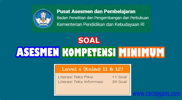Contoh Soal Akm Online Level 6 Kelas 11 Dan 12 Sma Cecepgaos Com