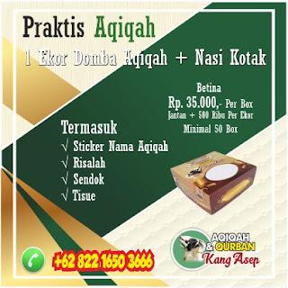 Paket Kambing Aqiqah di Bandung,aqiqah di bandung,aqiqah bandung,aqiqah,paket aqiqah ,kambing aqiqah bandung,
