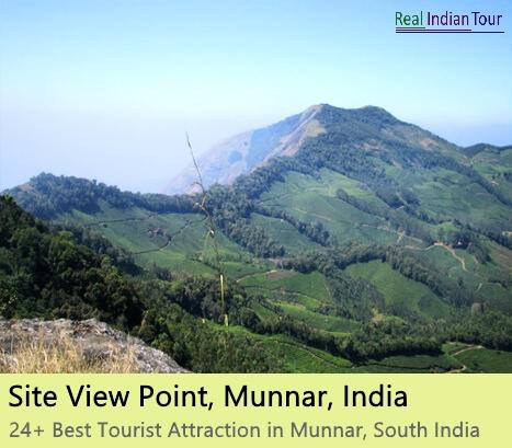 Munnar Attractions : Potamed Munnar