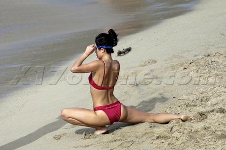 Zhang Ziyi Topless Bikini 12